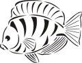 ステンシルシート 魚 フィッシュ