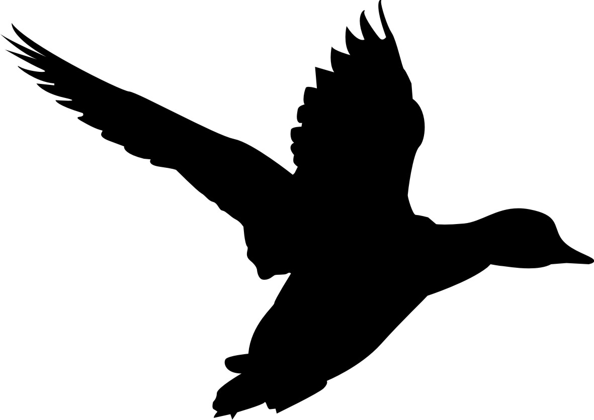 Pin 鳥シルエット on Pinterest : 動物シルエット無料 : 無料