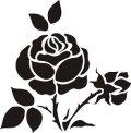 ステンシルシート 薔薇 バラ